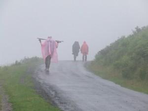 Les Marcheurs de St Jacques090714 (11)